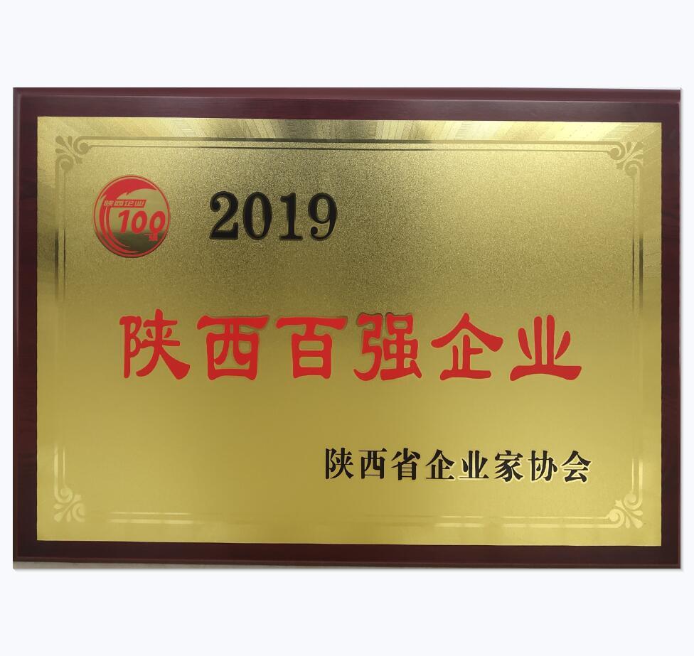 荣获2019年陕西百强企业